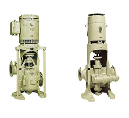 Naniwa Pumps